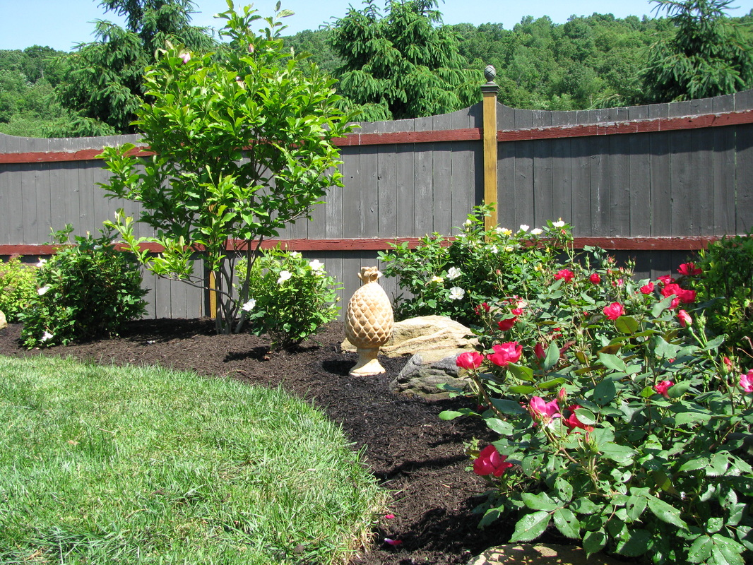Plantings Renovation Landscaping Patios And Retaining Walls